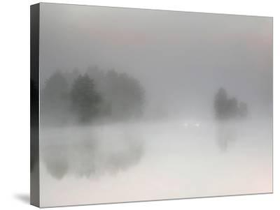 Misty Morning-Bjorn Emanuelson-Stretched Canvas Print