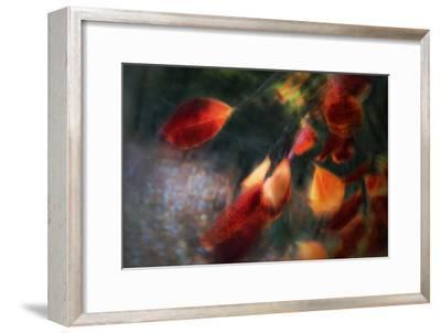 Windy Light-Gilbert Claes-Framed Photographic Print