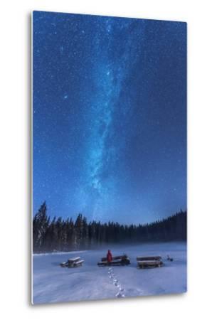 Under the Starry Night-Ales Krivec-Metal Print