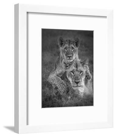 Playtime With Mama!-Ali Khataw-Framed Photographic Print