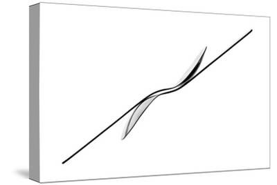 Balance-Gert Lavsen-Stretched Canvas Print