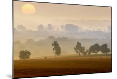 Morning View-Piotr Krol (Bax)-Mounted Photographic Print