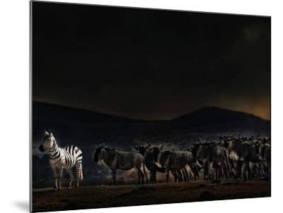 An Evening in Kenya-Piet Flour-Mounted Photographic Print