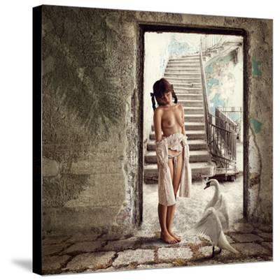 Princess and the Swan-Dmitry Laudin-Stretched Canvas Print