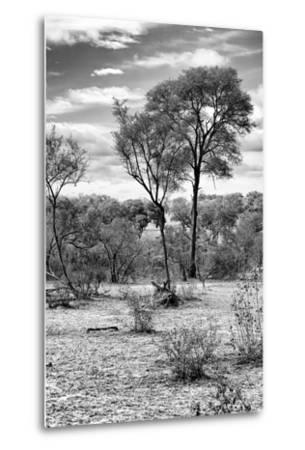 Awesome South Africa Collection B&W - African Landscape V-Philippe Hugonnard-Metal Print