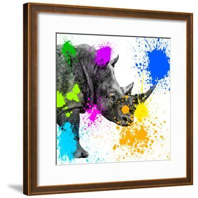Safari Colors Pop Collection - Rhino Portrait II-Philippe Hugonnard-Framed Giclee Print
