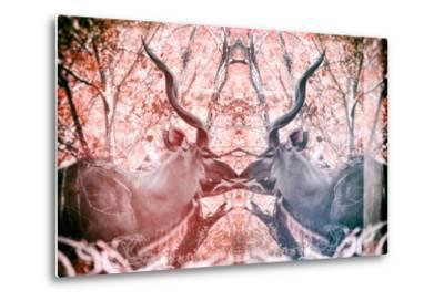 Awesome South Africa Collection - Reflection of Greater Kudu - Red & Dimgray-Philippe Hugonnard-Metal Print