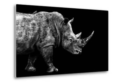Safari Profile Collection - Rhino Black Edition-Philippe Hugonnard-Metal Print