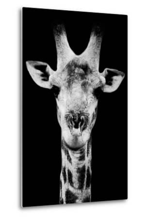 Safari Profile Collection - Portrait of Giraffe Black Edition V-Philippe Hugonnard-Metal Print