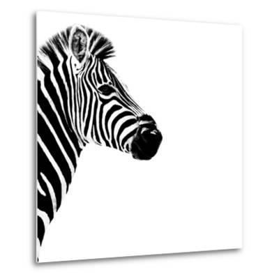 Safari Profile Collection - Zebra Portrait White Edition III-Philippe Hugonnard-Metal Print
