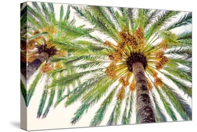 Chic Palms I-Acosta-Stretched Canvas Print