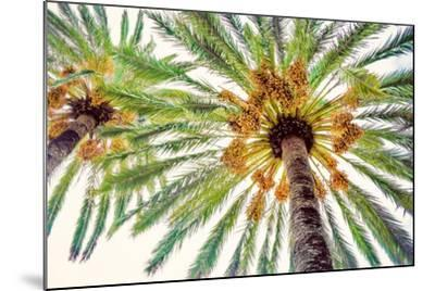 Chic Palms I-Acosta-Mounted Art Print