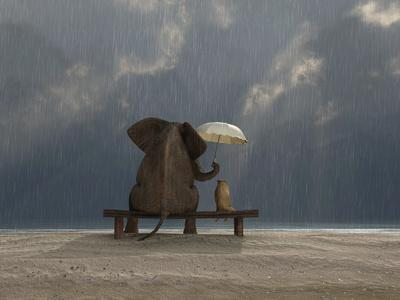 Elephant And Dog Sit Under The Rain-Mike_Kiev-Photographic Print