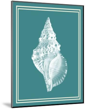 Mixed Nautical White on Teal c-Fab Funky-Mounted Art Print