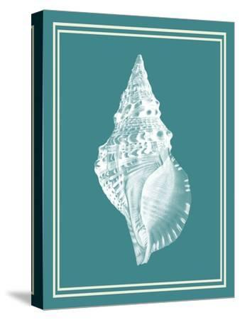 Mixed Nautical White on Teal c-Fab Funky-Stretched Canvas Print