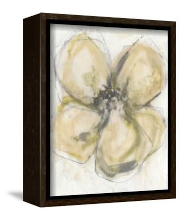 Waxen Petals II-Jennifer Goldberger-Framed Stretched Canvas Print