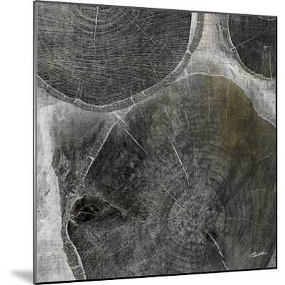 Logging V-John Butler-Mounted Photographic Print