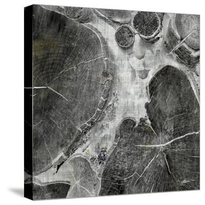 Logging I-John Butler-Stretched Canvas Print