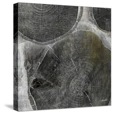 Logging V-John Butler-Stretched Canvas Print