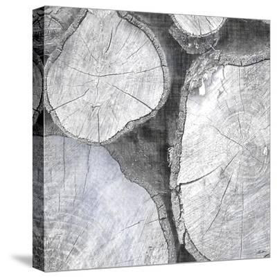 Logging Light II-John Butler-Stretched Canvas Print