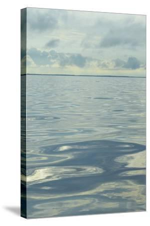 Water I-Sharon Chandler-Stretched Canvas Print