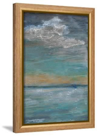 After the Storm II-Alicia Ludwig-Framed Stretched Canvas Print