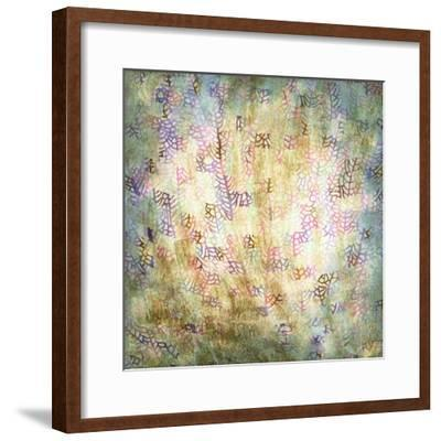 Coral Party II-Studio W-Framed Art Print