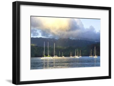Anchored-Danny Head-Framed Photographic Print