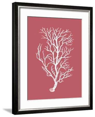 Corals White on Coral b-Fab Funky-Framed Art Print
