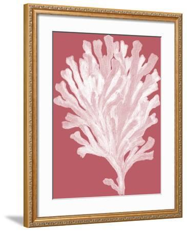 Corals White on Coral d-Fab Funky-Framed Art Print