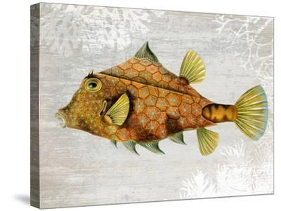 Gold Turret Fish-Fab Funky-Stretched Canvas Print