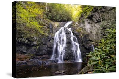 Spruce Flat Falls-Danny Head-Stretched Canvas Print