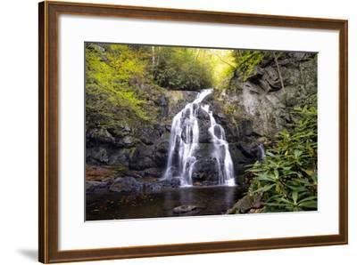 Spruce Flat Falls-Danny Head-Framed Photographic Print