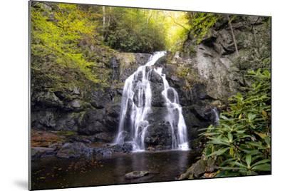 Spruce Flat Falls-Danny Head-Mounted Photographic Print
