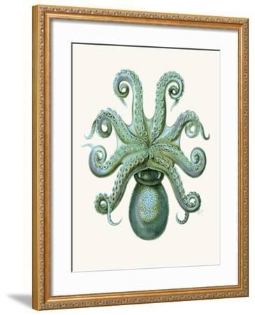 Turquoise Octopus and Squid c-Fab Funky-Framed Art Print