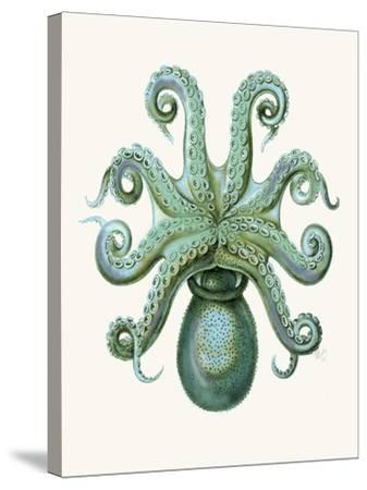 Turquoise Octopus and Squid c-Fab Funky-Stretched Canvas Print