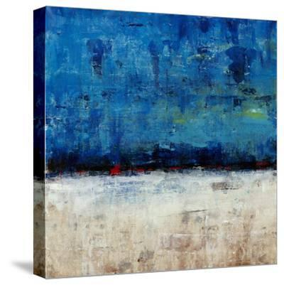 A Touch of Red II-Tim OToole-Stretched Canvas Print
