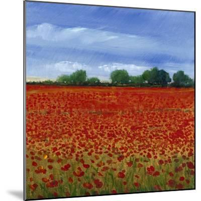 Field of Poppies II-Tim OToole-Mounted Art Print