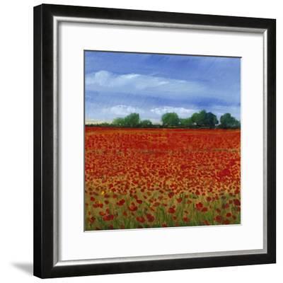 Field of Poppies II-Tim OToole-Framed Art Print