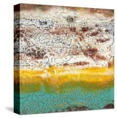 Arid II-Alicia Ludwig-Stretched Canvas Print