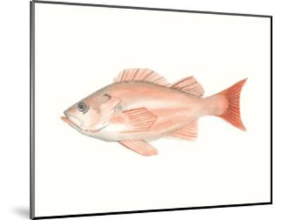 Watercolor Deep Sea Fish I-Naomi McCavitt-Mounted Art Print