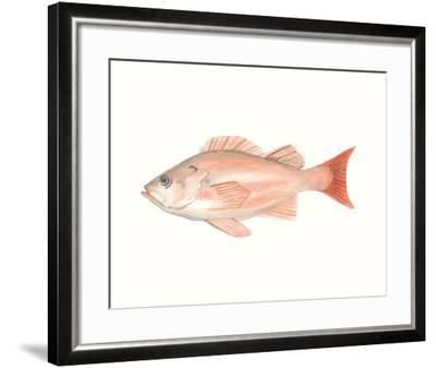 Watercolor Deep Sea Fish I-Naomi McCavitt-Framed Art Print