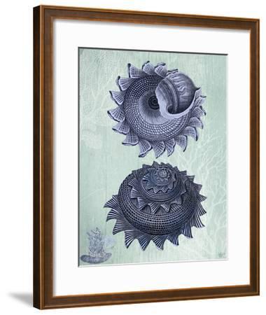 Seashell Collection 2 b-Fab Funky-Framed Art Print
