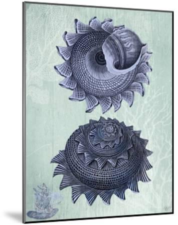 Seashell Collection 2 b-Fab Funky-Mounted Art Print