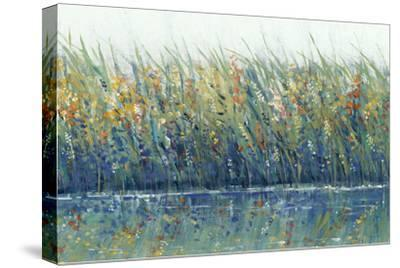 Wildflower Reflection I-Tim OToole-Stretched Canvas Print