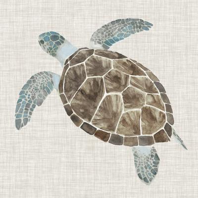 Sea Turtle II-Naomi McCavitt-Framed Premium Giclee Print
