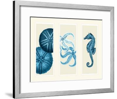 Three Panel Print Sea Urchin Starfish and Seahorse in Blue-Fab Funky-Framed Art Print
