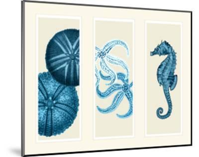 Three Panel Print Sea Urchin Starfish and Seahorse in Blue-Fab Funky-Mounted Art Print