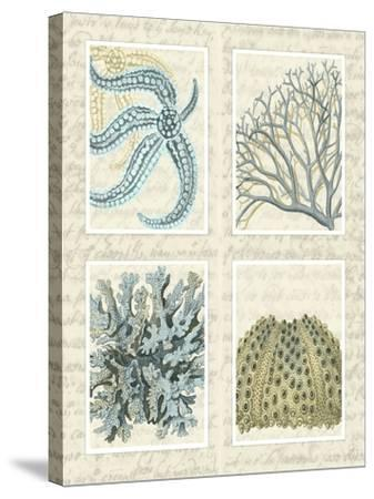 Blue Corals On Vintage Script in 4 Panels-Fab Funky-Stretched Canvas Print