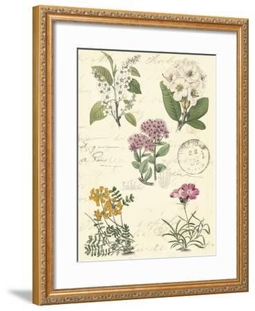 Botanical Journal II-Vision Studio-Framed Art Print